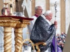 08-02-043-07-seelos-beatificazione