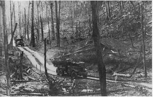Nessuna immagine del redentorista Fratello Joachim Hoàng Vǎn Hạng, C.Ss.R. 1909-1960 – Vietnam, Vice-Provincia di Hué morto a 60 anni, di cui 40 al servizio di Dio nella Congregazione: era il decano dei Fratelli vietnamiti. u una jeep, quando avvenne uno scontro con un pesante camion militare.